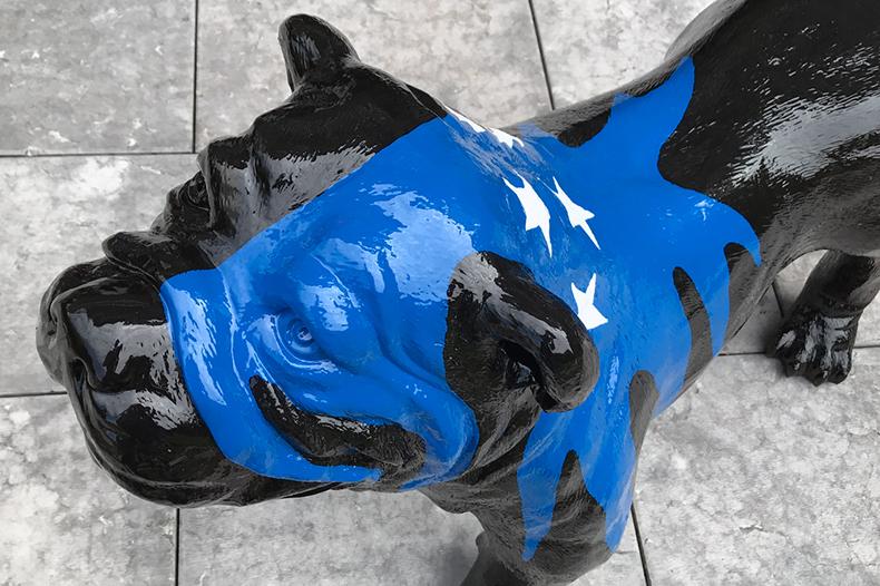 Détail tête de chien Fabbrik bleu et noir