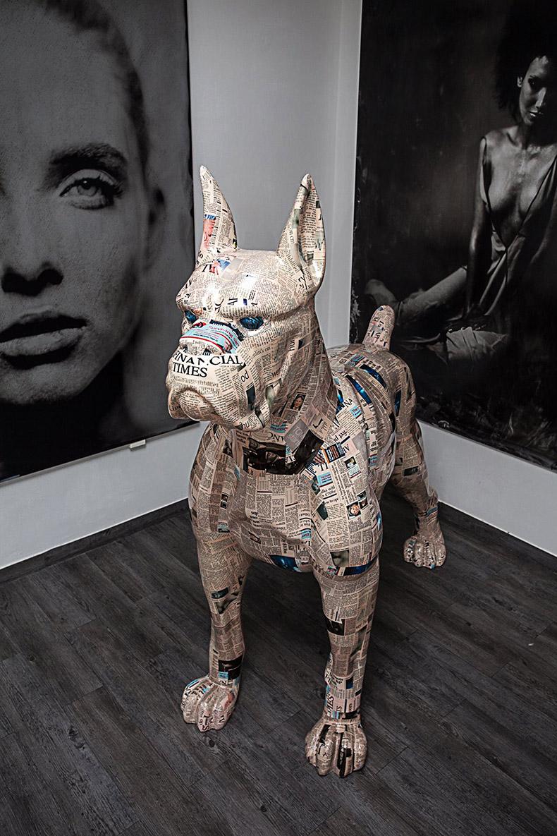 Grand chien Fabbrik en papier journal
